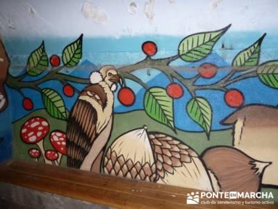El Castañar de El Tiemblo , Un bosque mágico;senderismo en la comunidad de madrid